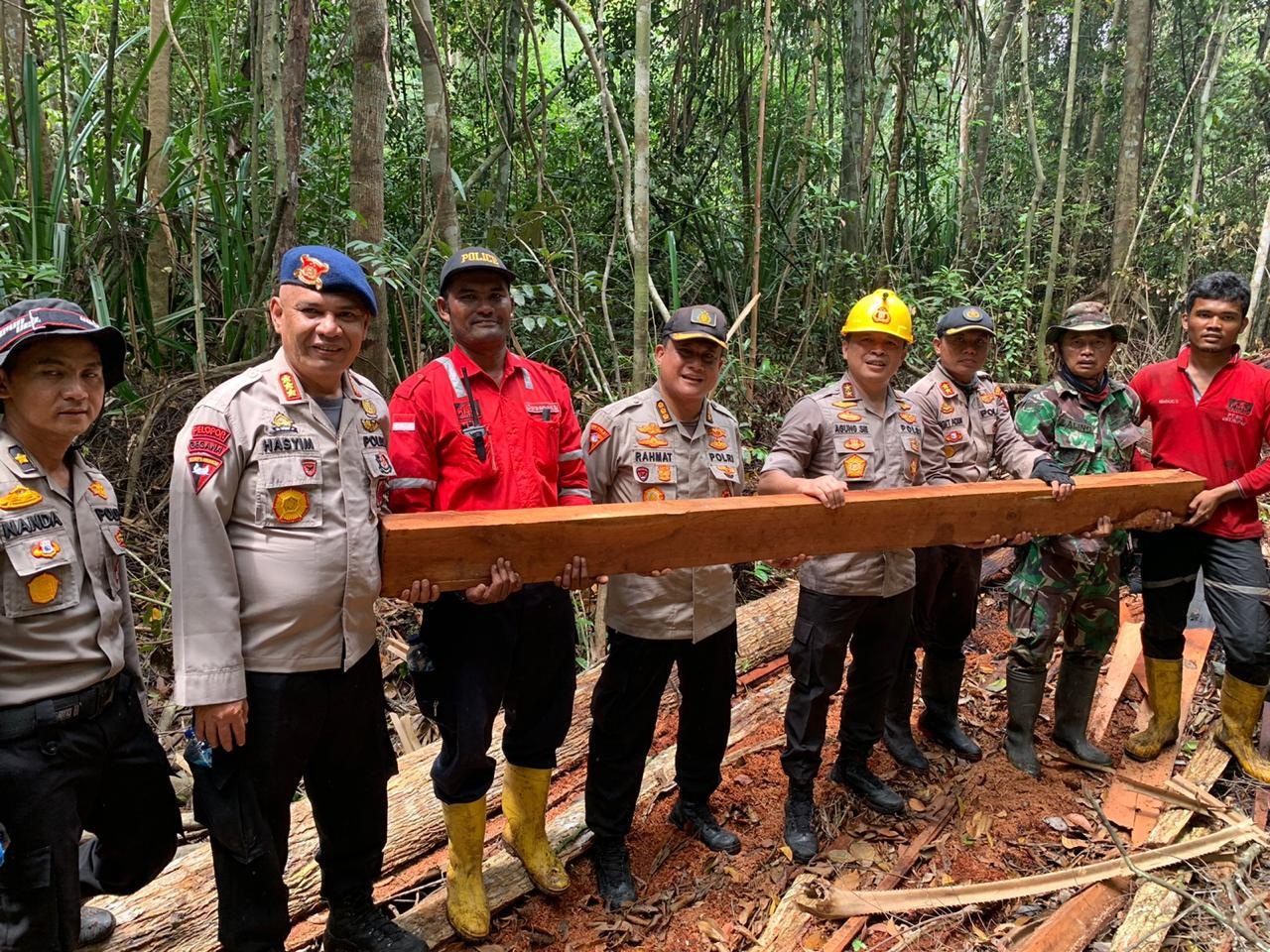 Kapolda Riau Komit Lawan Penjarah Kayu Hutan lalu Dijadikan Perkebunan