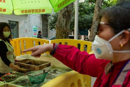 WHO Pastikan Pasar Hewan Wuhan Berperan dalam Penyebaran Covid-19