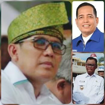 Analisa Politik Pilkada Rohil: PAN dan PDIP Usung