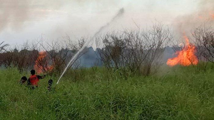 Kebakaran Lahan PT BMI di Siak Masuk Tahap Penyidikan Ditreskrimsus