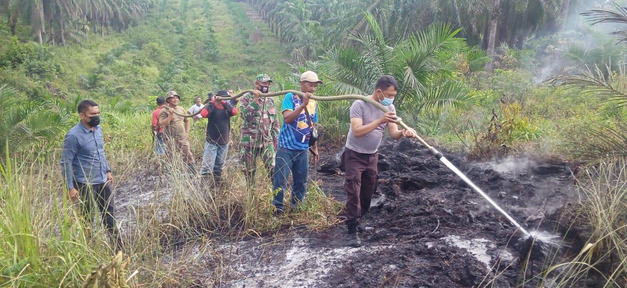 Gerak Cepat Satgas Karhutla Koto Gasib Riau Padamkan 0,25 Hektare dalam 2 Jam