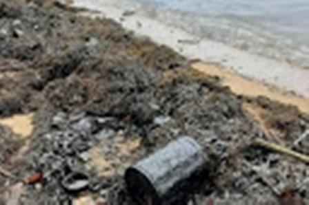 Pantai Pulau Batam Tercemar Limbah Minyak, Nelayan Kesulitan Dapatkan Ikan