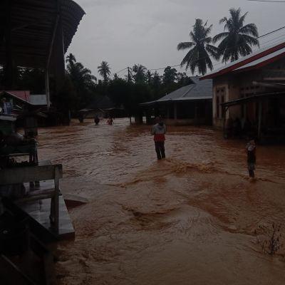 Ratusan Rumah Warga di Pawan - Rohul Dilanda Banjir